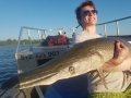 Texas-Alligator-Gar-Fishing (16)
