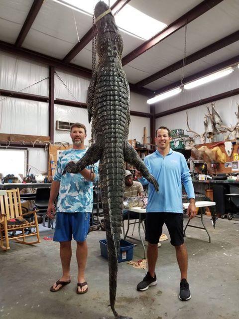 Texas-Alligator-Hunting (9)