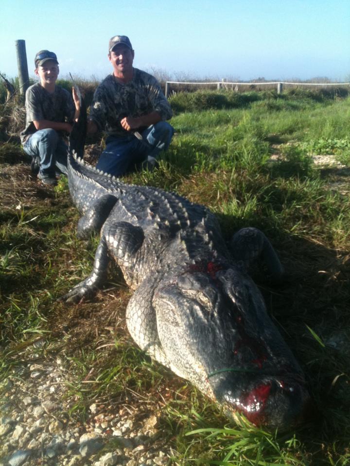 texas-alligator-hunts (6)