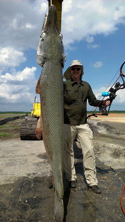 bowfishing-alligator-gar (11)
