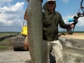 bowfishing-alligator-gar (11)