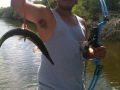 Texas-bowfishing (23)