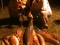 Texas-bowfishing (28)