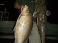 Texas-bowfishing (8)