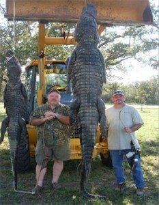 Alligator Trophy Hunt