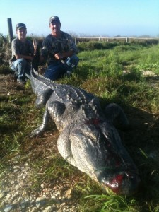 Texas Alligator Hunting